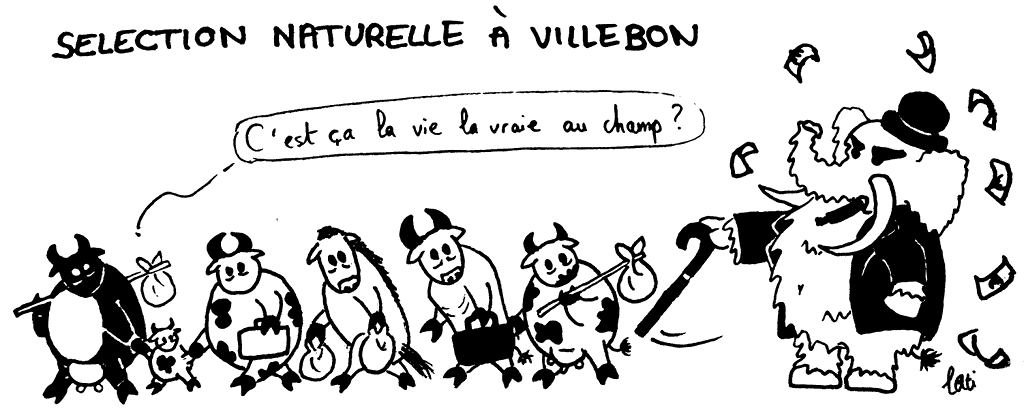 Sélection naturelle à Villebon